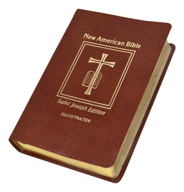 Bible New American