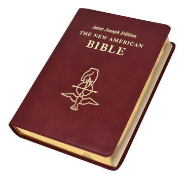 St Joseph New American Bible